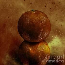 Shirley Mangini - Orange Art