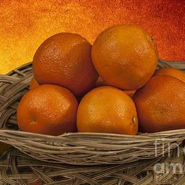 Shirley Mangini - Orange Basket