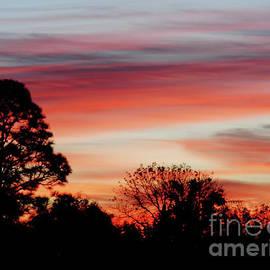D Hackett - Orange Clouds At Sunrise