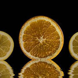 Shirley Mangini - Orange Lemon Reflection
