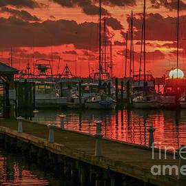 Tom Claud - Orange Marina Sunrise