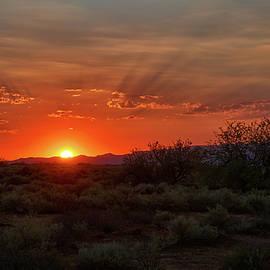 Saija Lehtonen - Orange Sky Sunset