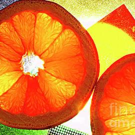 Alexander Vinogradov - Orange Slices.