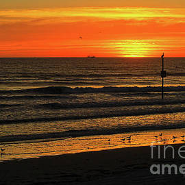 Orange Sunrise Morning by Deborah Benoit