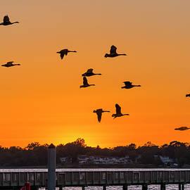 Brian Wallace - Orange Sunset - Bill Burton Pier