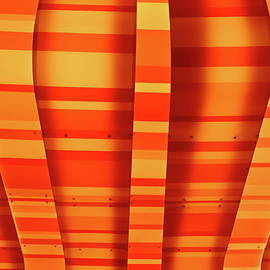 Denise Mazzocco - Oranges And Lemons Abstract