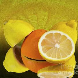 Shirley Mangini - Oranges and Lemons