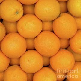 Ann Horn - Oranges