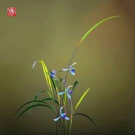 Orchid 9 by GuoJun Pan