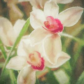 Teresa Wilson - Orchid Garden