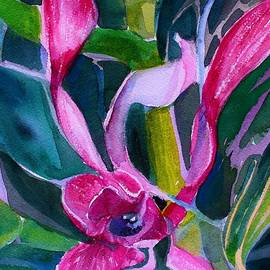 Orchid Pinks by Mindy Newman