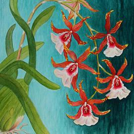 Orchids - Volcano Queen by Kerri Ligatich