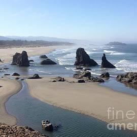 Oregon Coast Sea Stacks by Barbara Von Pagel
