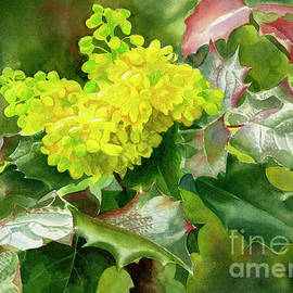 Sharon Freeman - Oregon Grape Blossoms with Leaves