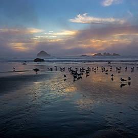 Oregon Sunset by Inge Riis McDonald