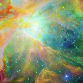 Ram Vasudev - Orion Nebula Messier 42  M42  NGC 1976
