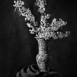 Ornamental Pear Blossoms B And W by Endre Balogh
