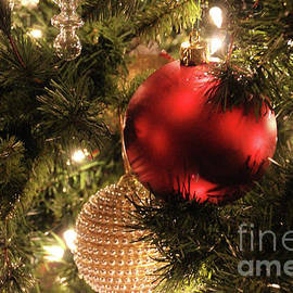 Ornaments-0505 by Gary Gingrich Galleries