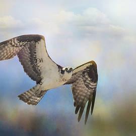 Osprey Coming In by Jai Johnson