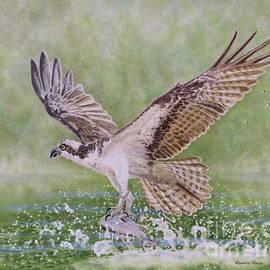Elaine Jones - Osprey Fishing