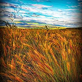 Out in the Tall Grass by Heidi Fickinger