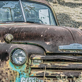 Out To Pasture by Joy McAdams