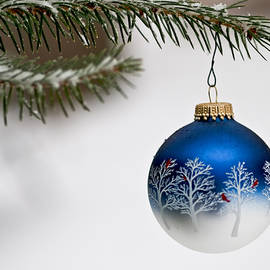 Outdoors Christmas Ornament by Jim DeLillo