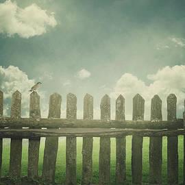 Mythja Photography - Over the fence