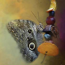Anita Faye - Owl Butterfly On A String