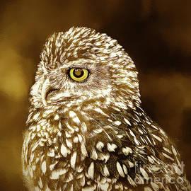 KaFra Art - Owl Portrait