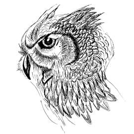 Owl sketch by Abstract Angel Artist Stephen K