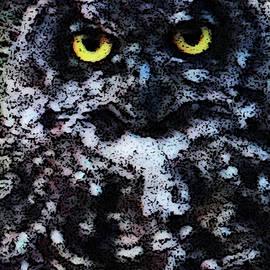 William Moore - Owl