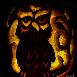 Owloween by Gary Holmes