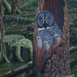Stanza Widen - Owls In A Rainforest