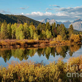 Oxbow Bend and Snake River by Bob Phillips