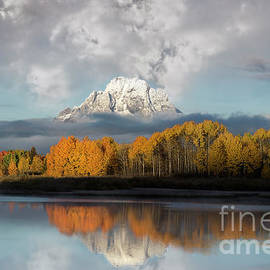 Oxbow Bend Majestic Reflection