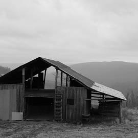 Ozark Barn by Mary Halpin