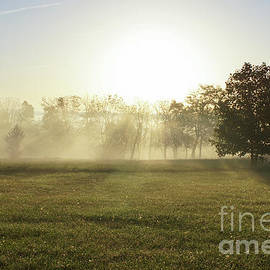 Jennifer White - Ozarks Morning Fog