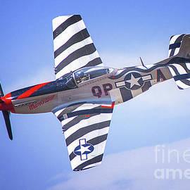 Jerry Cowart - P-51 Mustang Fighter