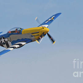 P-51 Mustang Fighters  by Kevin McCarthy