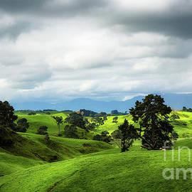 Kim Petersen - Shire landscape in Hobbiton, New Zeland