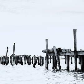 Alan Brown - P-Town Pier