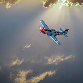 P51 Mustang by Bill Posner