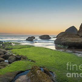 Pacific City Beach 3 by Paul Quinn