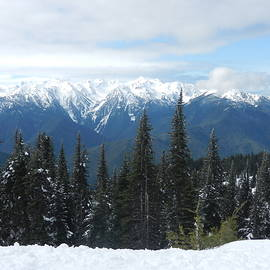 Pacific Northwest Glory by Rhonda Allbrandt