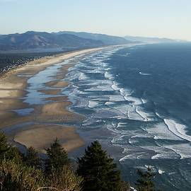 Pacific Ocean - Oswald West by Julie Rauscher