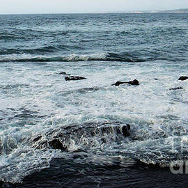 Pacific View 1 by Linda Shafer