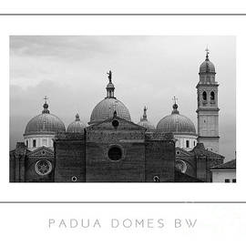 Mike Nellums - Padua Domes BW poster