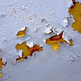 Lynda Lehmann - Paint Appeal