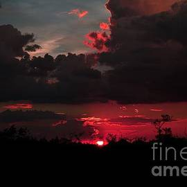Paint The Sky Red by Janet Marie